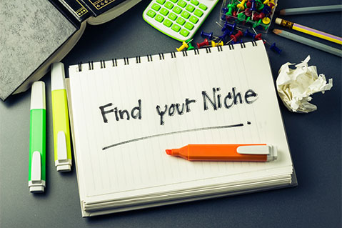 How to: Find a New Niche