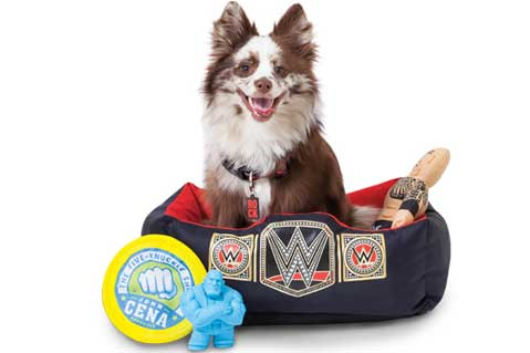 WWE Launches Pet Products