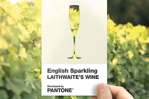 Pantone Creates New Wine-Inspired Color