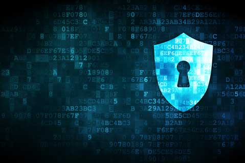 Firms Address Cybersecurity Risks